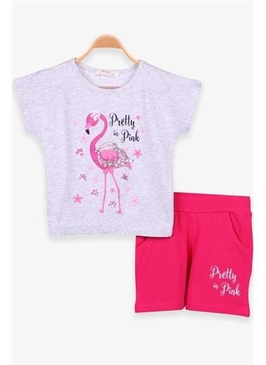 Breeze Kız Çocuk Şortlu Takım Flamingo Baskılı Gri Melanj  Gri
